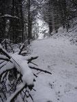 ... und wiederum durch einewunderschöne Winterlandschaft dem Gipfel entgegen.
