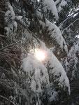 Die ersten Sonnenstrahlen erreichen uns nach wenigen Höhenmetern.
