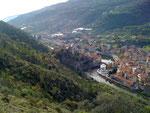 Alte Olivenhaine oberhalb Dolceacqua