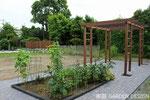 GD-041 千葉県木更津市H様邸 ガーデン工事