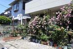 GD-035 千葉県習志野市K様邸 ガーデン工事