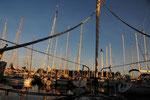 05:38 Morgenstimmung im Hafen von Tunö
