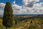 Umland von San Gimignano Toskana