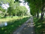 Dis Fred, ça ne ressemble pas un peu au Canal du Midi ?
