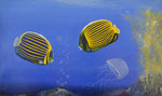Freude-Skepsis-Flucht, Öl auf Leinwand, 100x60 cm. Das Bild zeigt die unterschiedlichen Charaktere. Fisch Nr. 1 freut sich über das aufsteigen der Gasblasen, Fisch Nr. 2 ist skeptisch, Die Qualle ergreift die Flucht.