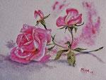 Une rose pour… - 31 x 24 - A VENDRE