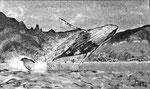 Saut de baleine - 40 x 24 - VENDU