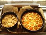 Apfel und Aprikosenkuchen