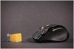 de muis voeren