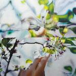 「春の行方」/15S/ アクリル、パネル、綿布