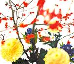 「初雪の赤」/10F/ アクリル、パネル、綿布