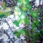 「桜の小道」/6S/ アクリル、パネル、綿布