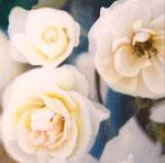 「白い誓いのとき」/SM S/ アクリル、パネル、綿布