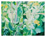 「菜花のプリズム」/100F/ アクリル、パネル
