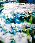 「睡蓮〜光の中で〜」/100×81㎝/ アクリル、パネル、綿布