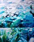 「睡蓮〜青い朝〜」/100×81㎝/ アクリル、パネル、綿布