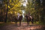 Летняя конная прогулка