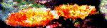 schwebendes Farbvolumen
