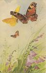 STZF 1236 [3 papillons avec fleurs]