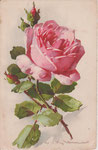 Jounok 177 [1 rose rose, 2 boutons rouge, 1 vert - vertical]
