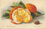 Jounok 237 [1 orange, 1 orange ouverte, 1 châtaigne]