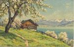 BACHMANN Jakob Edwin Suisse (1873 - 1957)