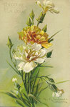 PFB 1892  2106 [3 oeillets blancs, 1 jaune, boutons]