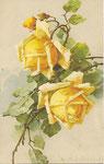STZF 1247 [2 roses jaunes]