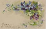 WNB S.3938 Violettes à droite et en haut