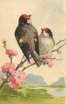 Jounok 231 [2 oiseaux à tête rouge sur branche à fleurs roses]