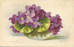 Jounok 229 [bol en verre avec violettes - horizontal]
