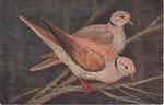 GRUNZWEIG Hedwig
