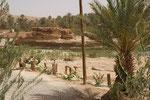 Freier Blick auf den Oued vom neuen Campingplatz in Tata