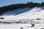 Jetzt fehlen nur noch die Skifahrer