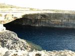Das stürmische Wetter vor einer Woche hat hunderte Spiegeleiquallen in die Höhlen und an die Küste getrieben