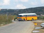 Dies sind die berühmt berüchtigten Busse ...... schön gelle.
