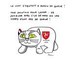 A Léhon le chat d'Abstatt a perdu sa queue....