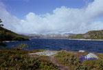 DS 21-1-2000 Norwegen, Aust - Agder, Im Gebirge an derDoppel- Talsperre Kvernevatnet