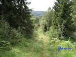 P8210750  in den Bergen über  unserer Hütte in Bjaerum/Norwegen/Vestagder. Unsere Hütte - der braune Fleck in der Bildmitte