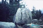 """PICT0056 Die Kästeklippe liegt im Harz auf den Huthberg  oberhalb das Okertales. Hier der """"Opferstein"""". In die oben ausgehöhlte Schale wurde vermutlich das Opfertier gelegt und der Spalt diente dann wohl als Blutabfluß. Entspricht so der Mythologie."""