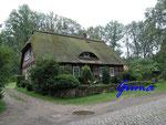 P8311203 Schönes Reeddachhaus in Wilsede