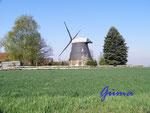 P4130286 Windmühle in Burgstemmen