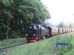 P8041087  Harzer Quer- und Brockenbahn mit Lok 997243-1, Ausfahrt von Drei Annen Hohne Richtung Wernigerode, Abfahrt 19.23