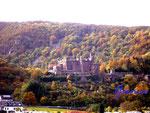 Pa260015 Burg Reichenstein-Rhein. Im bezaubernden Herbstlicht liegt diese Burg direkt am Rhein.