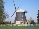 P4130287 Windmühle in Burgstemmen