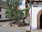 1-10-P8240005 lauschig in Leinsweiler-Pfalz