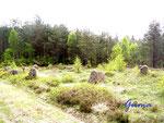 P1010029 Steinsetzung in Tingvatn 2. An dieser Stelle war früher die Gerichtbarkeit bzw. ein Versammlungsort - Tingplatz.