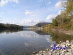 PA260018 Am Rhein bei  Lorch