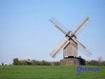 P4130305 Windmühle bei Liebenburg 2. Diese Windmühle ist leider im Mai 2012, kurz vor dem Mühlentag am Pfingstmontag einem Brandanschlag zum Opfer gefallen.