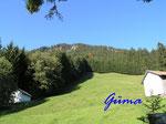 PA221425 Allgäu - Blick auf den Gipfel des Grünten